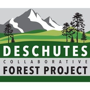 Strategic communications and web content for Deschutes Collaborative Forest Project