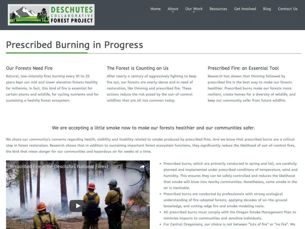 DCFP web page screen shot